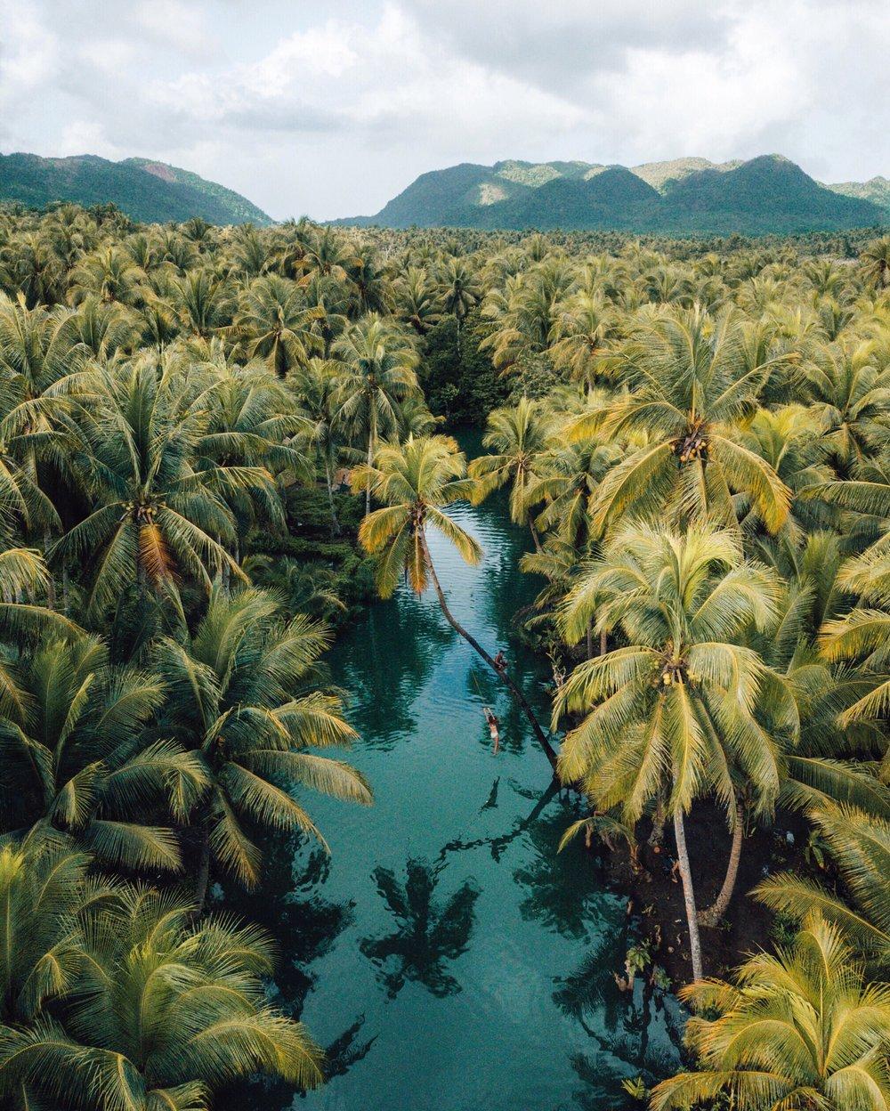 Hidden Palm, Siargao
