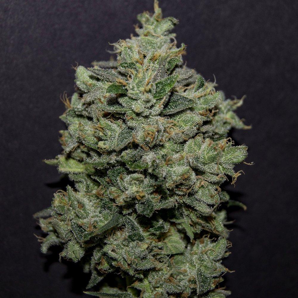 Skyttles - 26.18% THC2.314% Terpenes