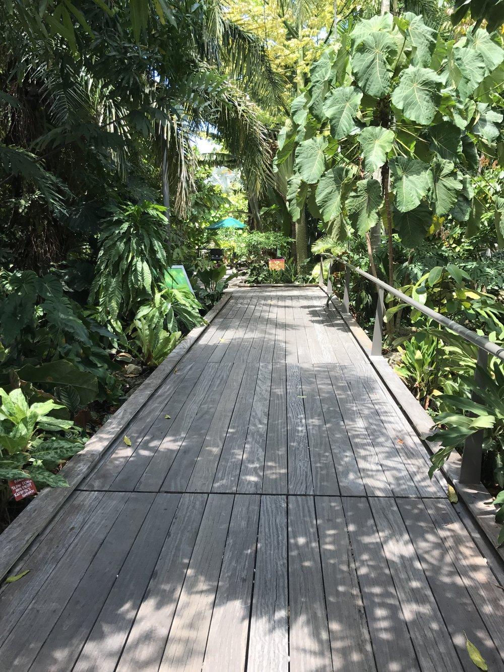 Botanical Garden, Naples, FL (2).JPG