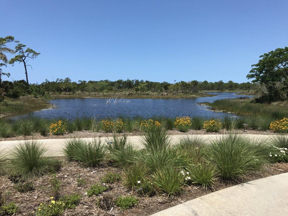 Botanical Garden, Naples, FL (6).JPG