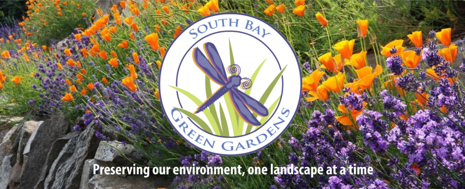 South Bay Green Gardens