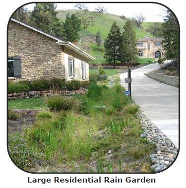large residential rain garden (002).JPG