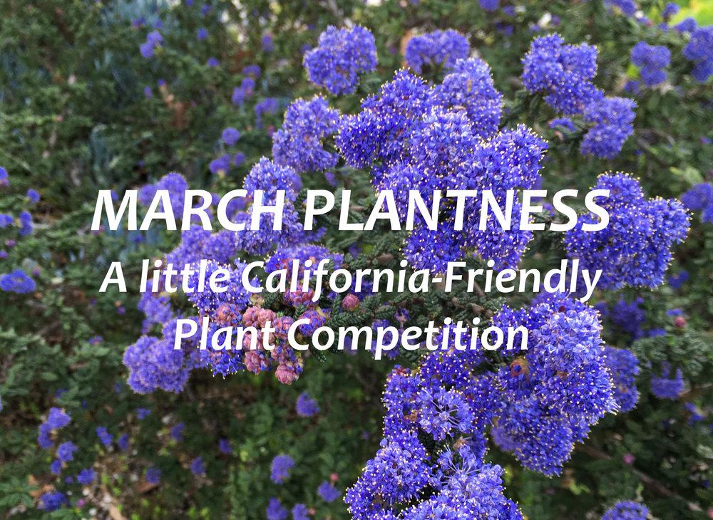 March Plantness Final.JPG