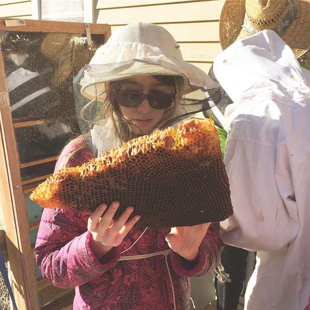 Budding beekeepers. Thank you for hosting us, Vicky! . . . #perfecttenhudson #budding #beekeepers #savethebees #honeycomb #hivemind #handson #bees #beekeeping #beeswarm #lovebees #optoutside #takeacloserlooker #hudsonvalley #communitylove #womenempoweringwomen #socool #columbiacounty