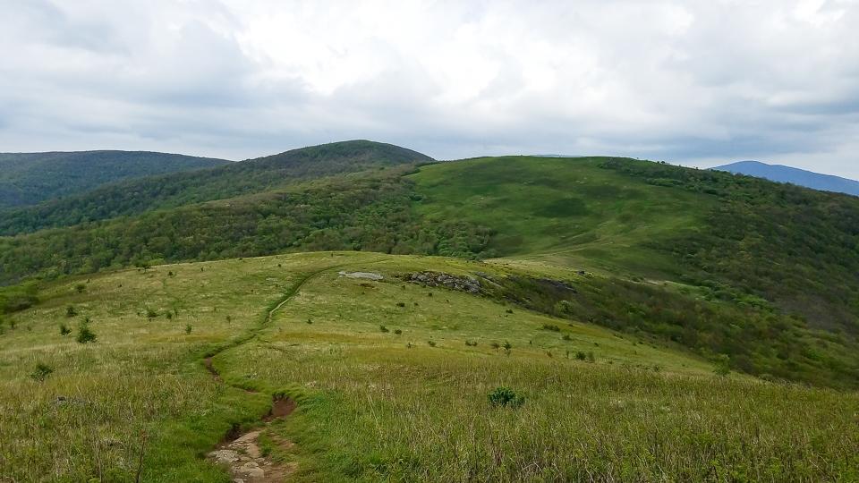 roan highlands grassy bald