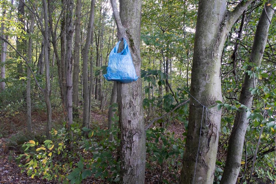 wrong way to hang a bear bag