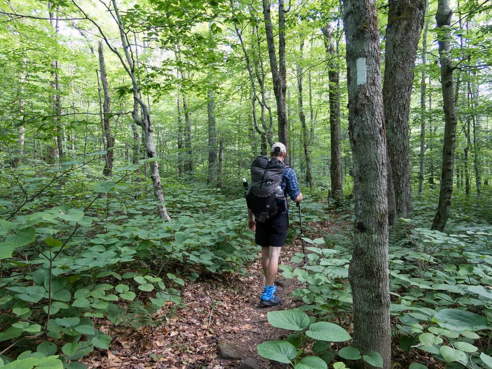 Long trail walking trail (1 of 1).jpg