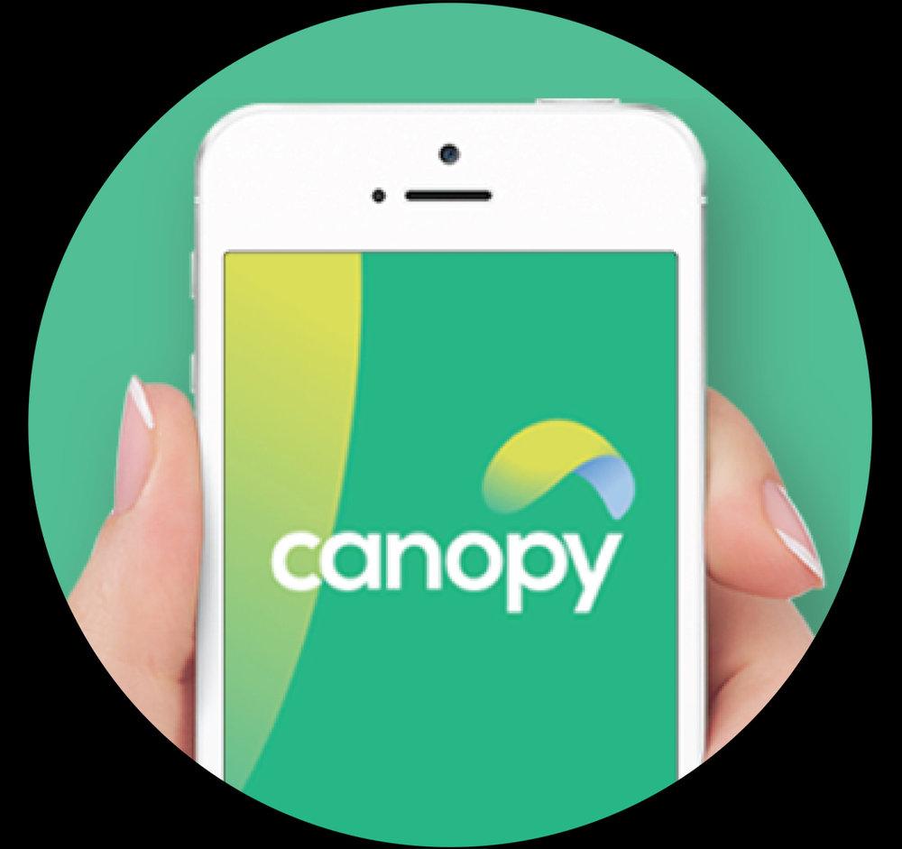 Canopy case study