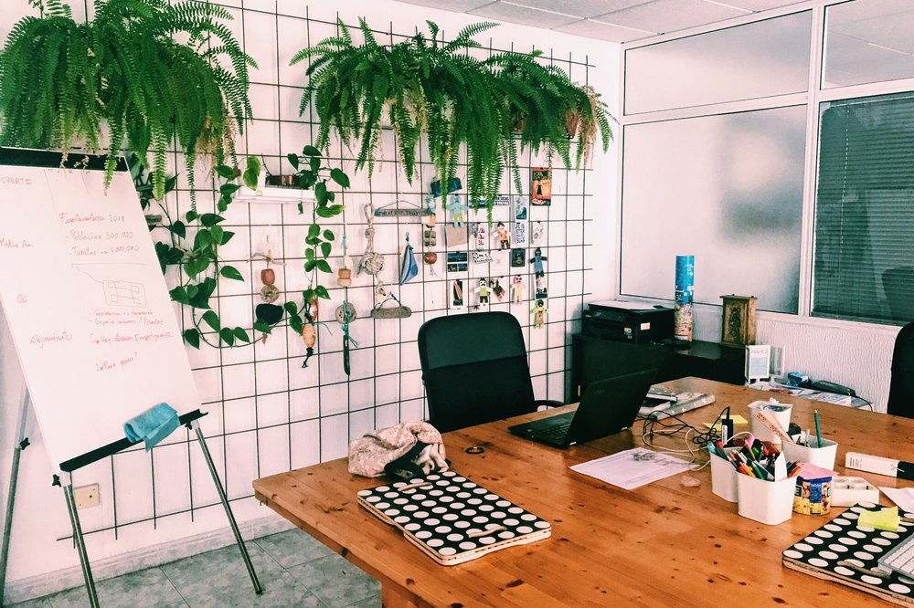 Hub Fuerteventura: coworking in the Canary Islands