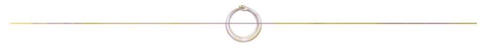 Website Ouroboros LINE divider small.png