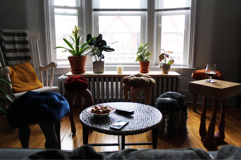 website_pet+furniture_01.jpg