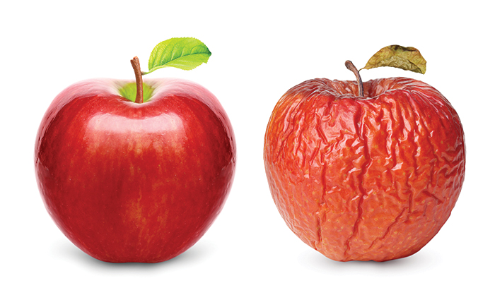 Would you eat a rotten apple? - Then why wear old and dirty contact lenses?