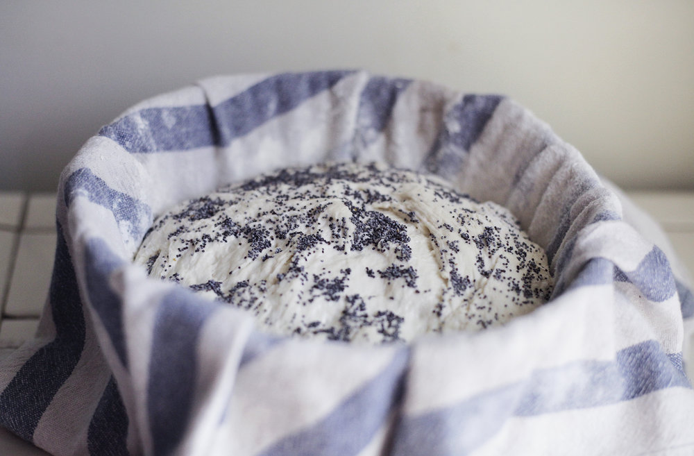 No Knead Wild Fermented Sourdough Bread Sandor Katz Style Poppy Seed small.jpg