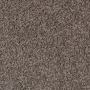 carpet-timeless-cocotone_stipple-floor-godfrey_hirst.jpg