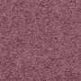 carpet-cathedral_twist-damask_rose-floor-godfrey_hirst.jpg