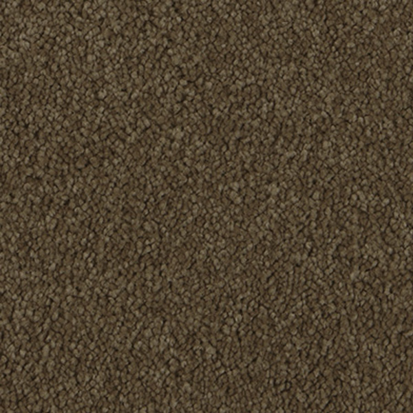 carpet-apolloridge-burnishedsuede-floor-sprucedup.jpg
