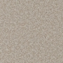 carpet-natural_trends-bone-floor-godfrey_hirst_carpet.jpg