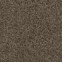 carpet-pacific_view-sandstorm-floor-godfrey_hirst.jpg