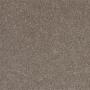 carpet-dream_view-hot_chocolate-floor-godfrey_hirst.jpg