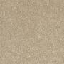 carpet-dream_view-cashew-floor-godfrey_hirst.jpg