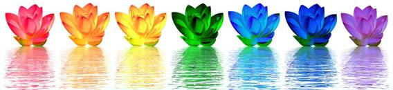 Chakra - Healing