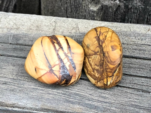 Picture Jasper - Stone of Great Vision