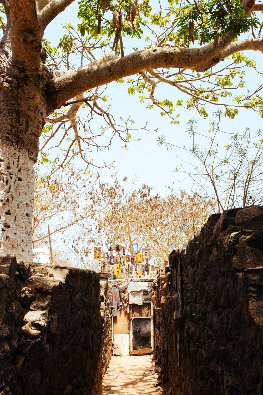 Senegal-96.jpg