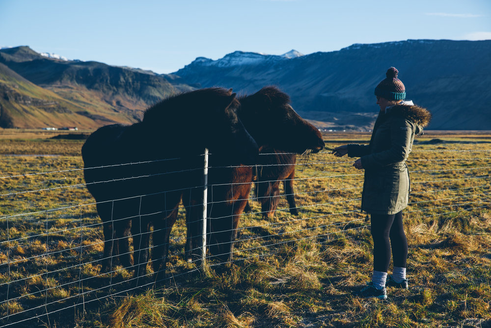 Iceland 501.jpg