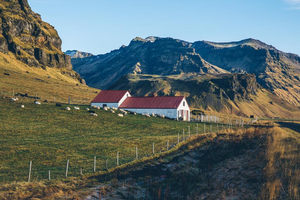 Iceland 505.jpg