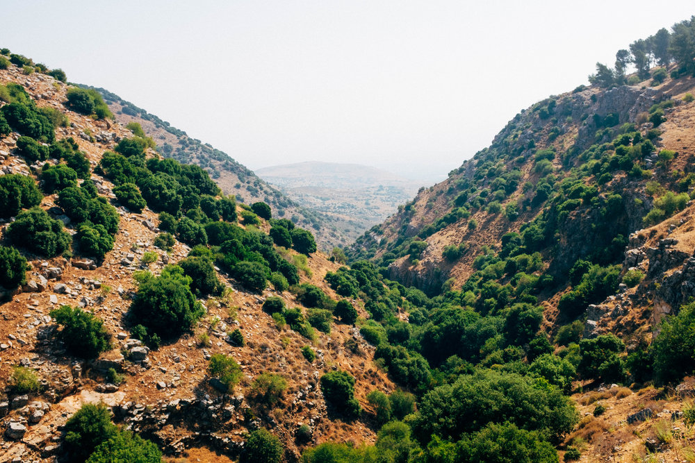 Israel-305.jpg