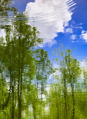 Fishing Pond Amicalola Falls Reflection Pool April, 2017