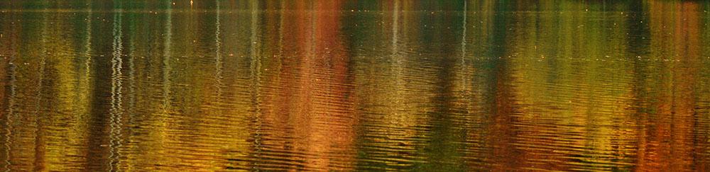 Fall Reflection Miller Lake, Dacula, GA October, 2016