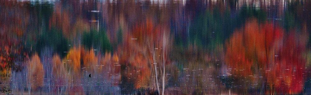 Water Color Miller Lake, Dacula, GA November, 2016