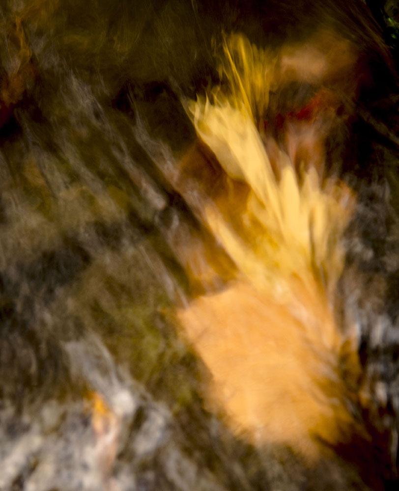 Autumn Falls Nantahala National Forest October, 2018