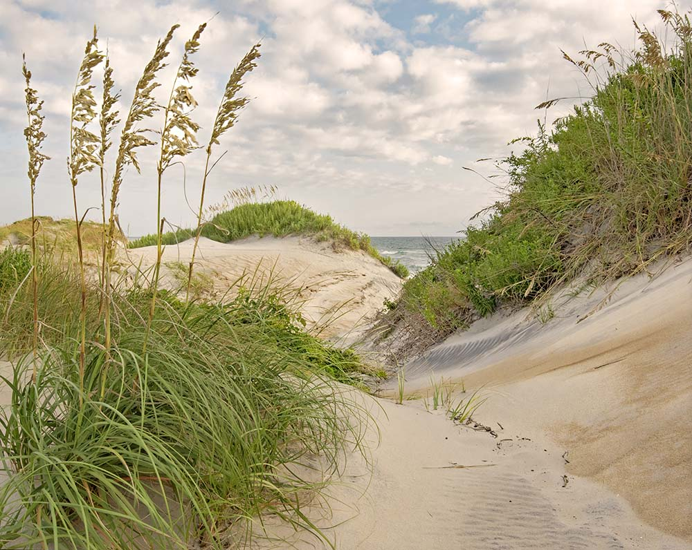 Canyon Outer Banks, NC August, 2018