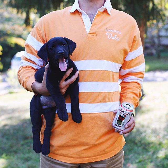 Any dog is better than a bulldog. Vols are about to send those puppy dawgs to the pound! Our prediction: Vols win by 3. In the meantime, enjoy some WFB!