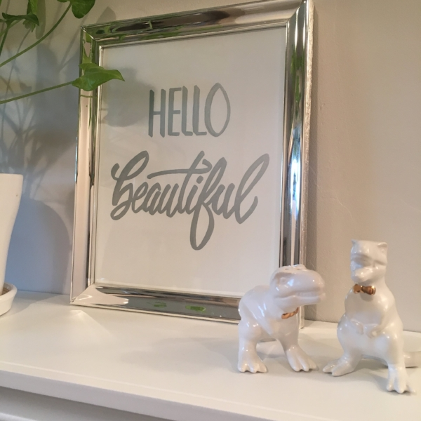 hand lettering bathroom hello beautiful dinosaurs