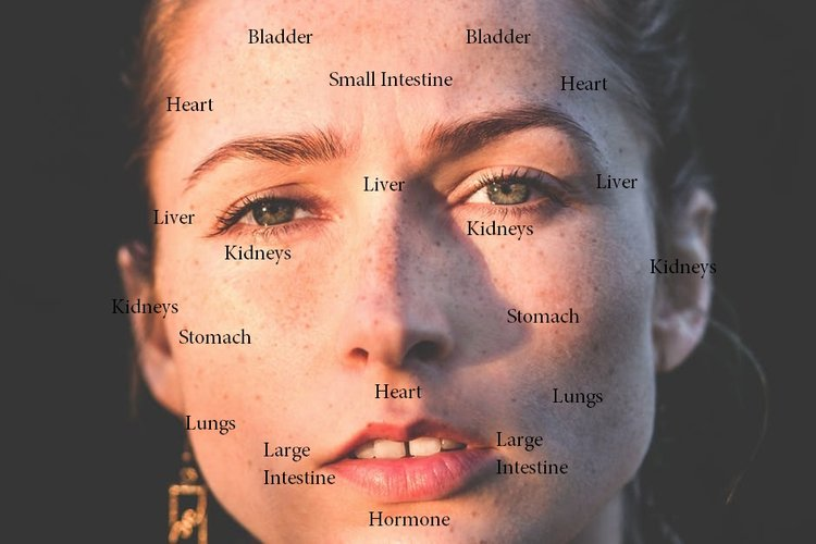 Acne Face Mapping : How Your Acne Speaks For Your Health — THREAD Acne Face Mapping on