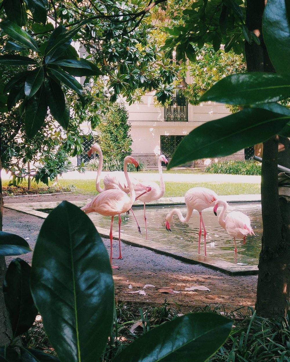 Villa_Invernizzi_milan_martinaacorradi.jpg