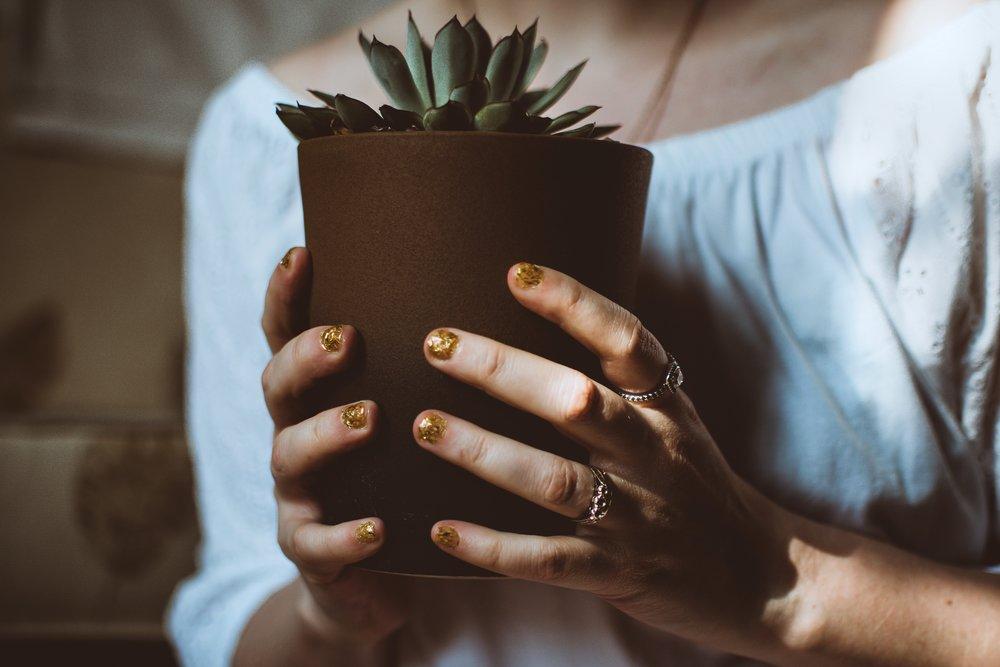 adult-blur-botanical-1121230.jpg