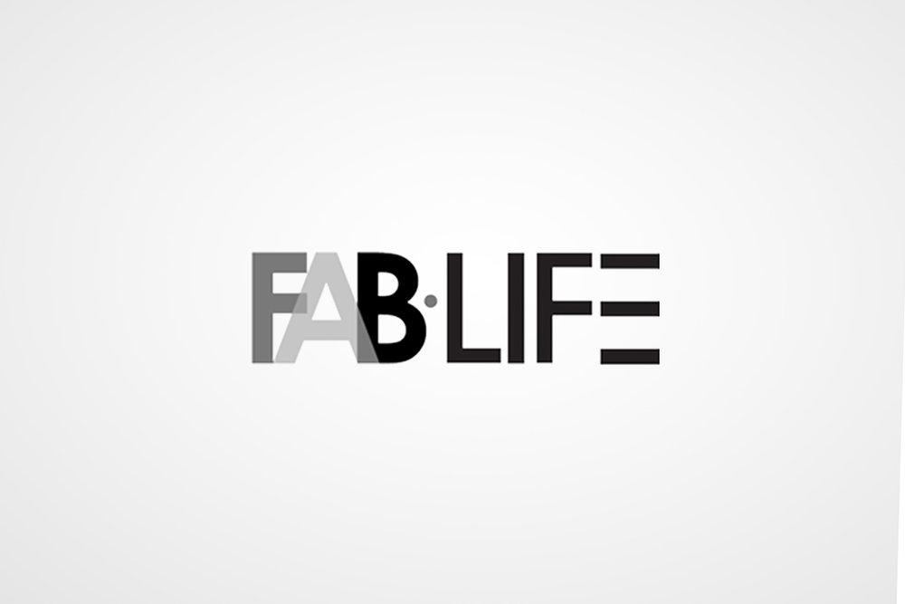 03_Fab.jpg
