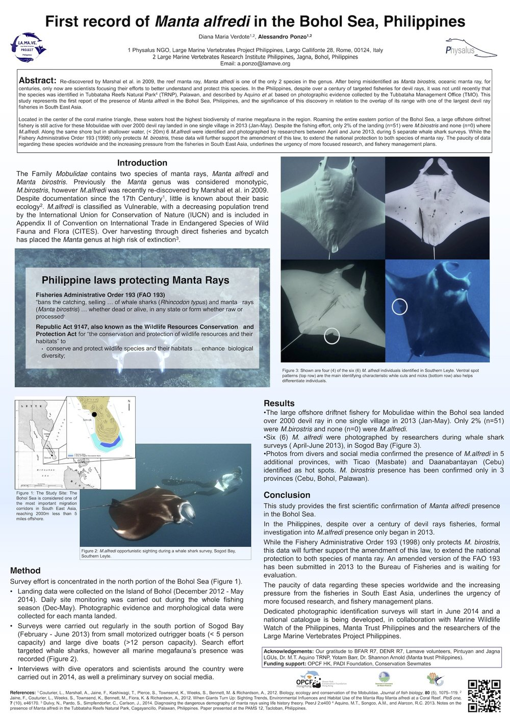 Ponzo_A.First-Record-of-Manta-Alfredi-in-the-Bohol-Sea.jpeg