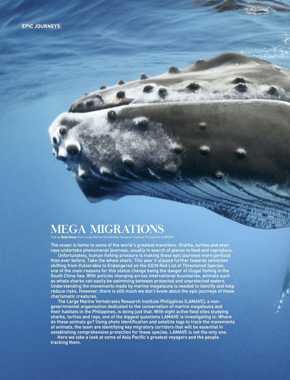 Mega Migrations from SDAA 7-Epic Journeys.jpg