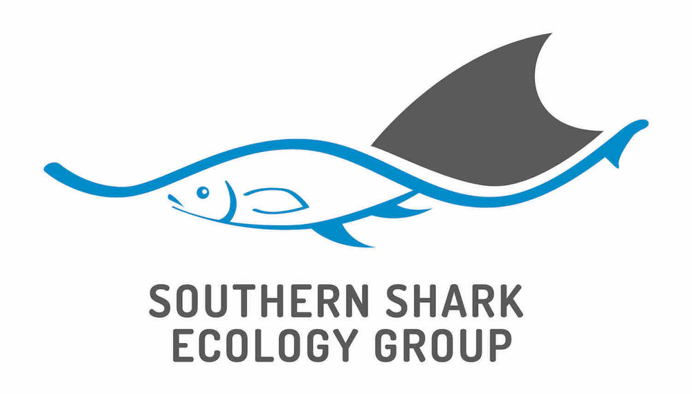South Shark Ecology Group