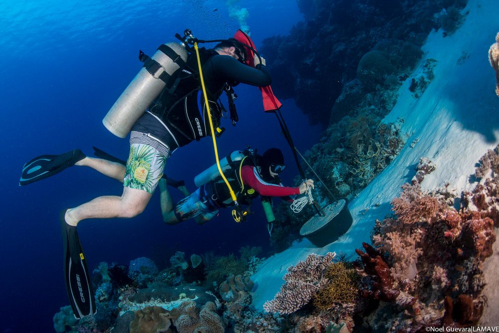 Gonzalo Araujo and Dr Simon Pierce position an acoustic receiver base on one of the atoll walls of Tubbataha Reefs Natural Park.