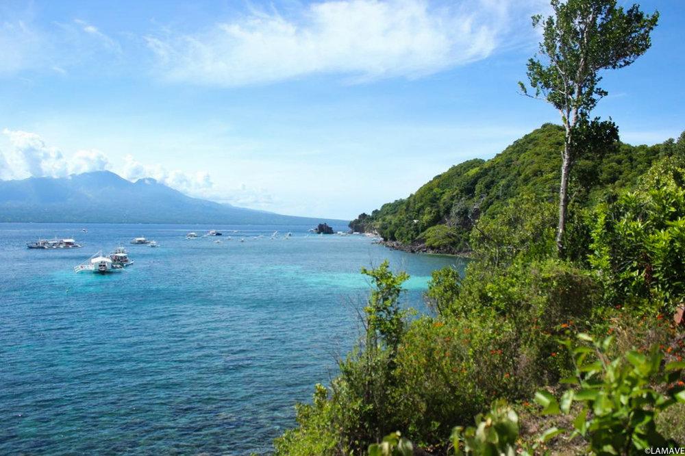 Apo Island, Negros Oriental.