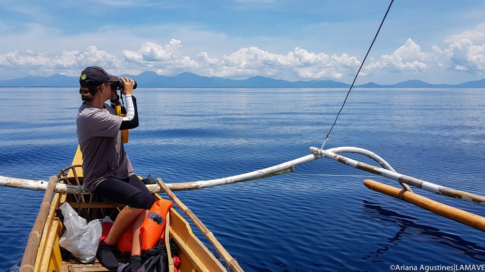 Annika searching for signs of whale sharks whilst on survey in Palawan.
