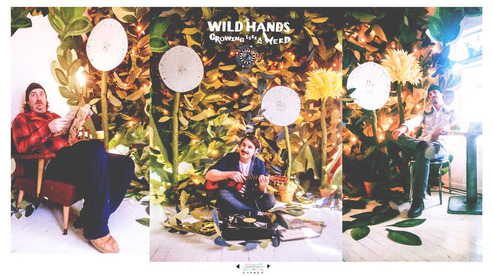 WildHandsWEBPHOTO.jpg