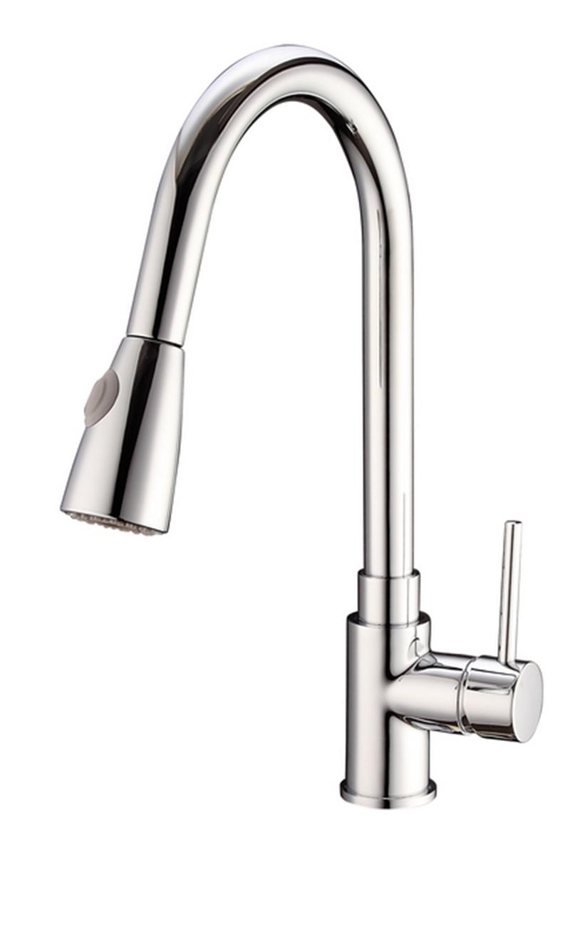 3013-101: Kitchen faucet