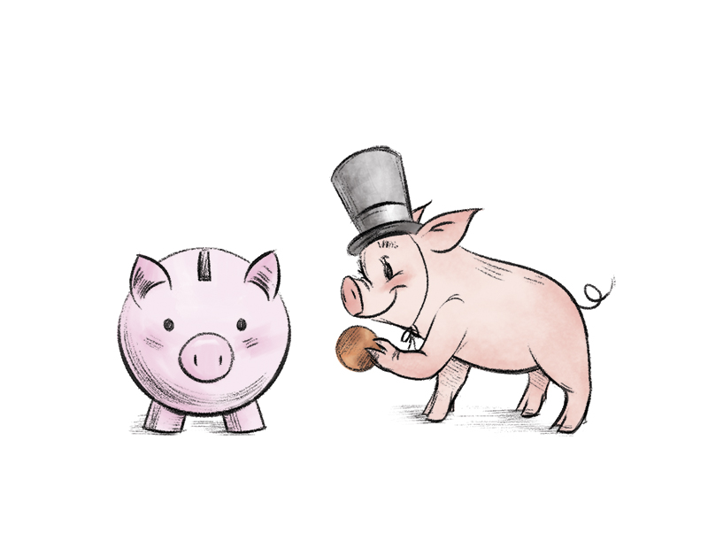 JuneSparrow_PigSpot01.jpg